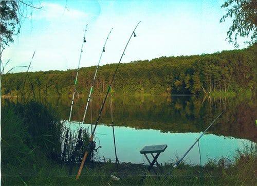 будет ли у нас платная рыбалка