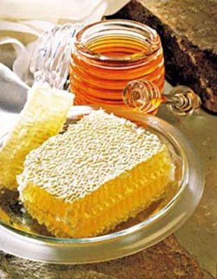 Бизнес-план пчеловодства, пасеки, разведения пчел, пчеловодческого хозяйства скачать с готовыми расчетами