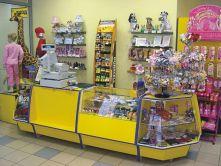 cb7b0ca105d6 Бизнес-план магазина детских игрушек скачать с готовыми расчетами